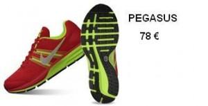 Nike-Pegasus+29-rojas - copia